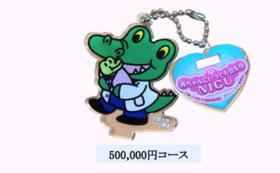 500,000円コース