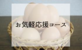 お気軽応援コース