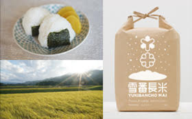 【食べて応援】雪郷で作られた「雪番長米【新米】