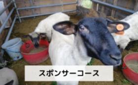 スポンサーコース【50,000円】