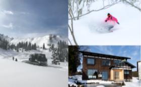 【雪郷× Hikarigahara Cat Tour】 上越妙高の冬の恵みを満喫するスノーセッション