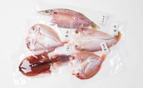 【福井県外の方限定】旬を味わう贅沢!魚の美味しさを閉じ込めた、若狭の灰干しセット