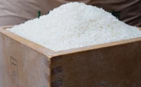 【福井市外の方限定】岡の泉で育ったコシヒカリ(5kg)