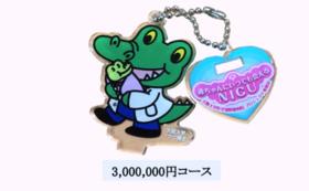 3,000,000円コース