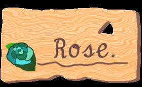 Rose【白】