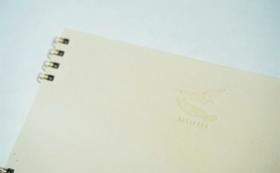 【10%OFF】①やなせ和紙・本鳥の子紙無地三號漉トリノコノート1冊(B6サイズ)