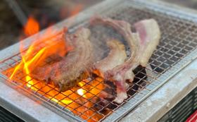 【体験で応援】炭焼き体験・BBQプラン *お土産あり