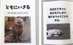 NO MORE ALLEY CATSオリジナル小冊子&サンクスメール