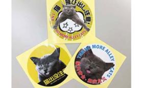 NO MORE ALLEY CATS オリジナルステッカー(地域猫グレコ)
