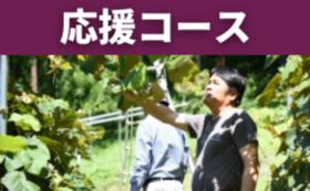 応援コース|100,000円
