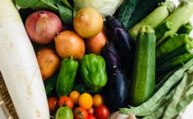 農業応援&自然栽培野菜お試しセット ミラクルセレクト