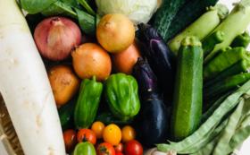 【3ヶ月定期便】農業応援&自然栽培野菜お試しセット ミラクルセレクト