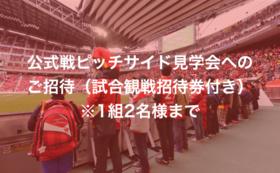 I:【豊田市外の方限定】公式戦ピッチサイド見学会へのご招待(試合観戦招待券付き)※1組2名様まで