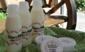 お気持ち以上の気持ちに感謝いたします!!! ☆★☆当社乳製品(自家製チーズ入り)又はプロジェクト終了報告書のお届け☆★☆