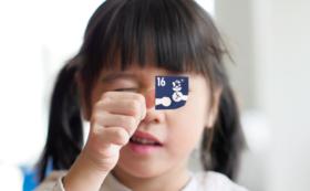 【SDGsシール絵本を子どもたちへ】応援コース