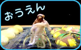 【グッズで応援】ウミガメコース