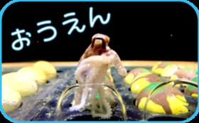 【リターンご不要な方へ】おもしろ水族館大大応援コース