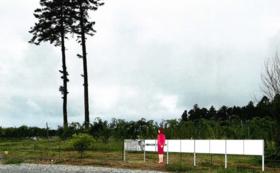 企業様広告看板(小)900x600 小浜圃場