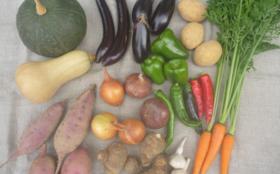 結い家の無肥料自然栽培野菜『詰合せボックス』3回分