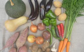 結い家の無肥料自然栽培野菜『詰合せボックス』6回分