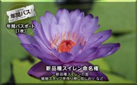 【完売】スイレン命名権コース