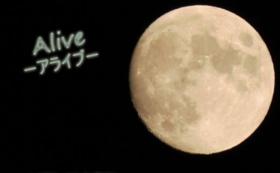 応援券(5.000円・宮川秀一さんポストカード)