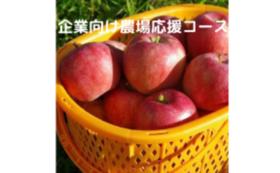 【企業様向け】農場応援コース③
