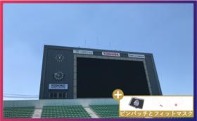 【桜応援コース】800,000円