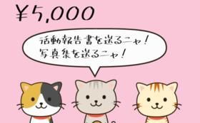 5000円支援