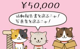 5万円支援