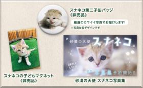 【11/25NEW】スナネコ第2子誕生記念|スナネコ赤ちゃんコース