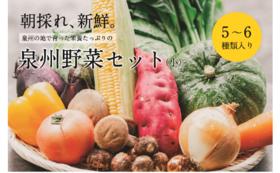 季節の泉州野菜セット(小)(2万5千円)