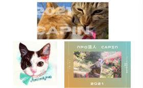【CAPINグッズで応援】オリジナル絵葉書(5枚)