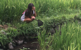 Macang村BabiGuringSamusamu付き1泊キャンプコース(4名様まで)