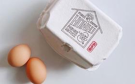 食べて応援!!【新規就農者の鶏の卵】