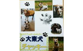 B4|【数量限定!】大東犬チャッキーの足跡スタンプコース