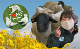 【12/11NEW】牧場限定グッズで応援!クラウドファンディング限定ふわもこ羊毛風マスク&オリジナルマグネットコース