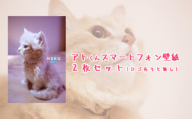 【アトくん応援コース-500】