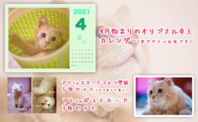 【アトくん応援コース-5000】