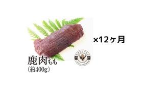 毎月シカ肉をご自宅にお届け!