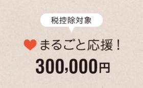 【税控除対象】まるごと応援300,000円コース
