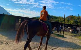【御越しになれる方向け】サラブレッドの乗馬を体験できます!