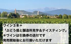 ワイン3本+「ぶどう畑と醸造所見学&テイスティング」コース