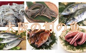 【季節の旬の魚をお届け】3ヶ月お試しコース