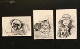 お写真(コピー可)お見せください。マーカーペンと筆ペンで「ハガキ」にイラストをお描きしお送り致します。