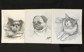 お写真(コピー可)お見せください。マーカーペンと筆ペンで「色紙」にイラストをお描きしお送り致します。