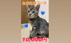 全額応援コース:10,000円