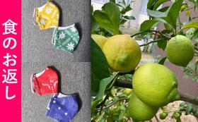 【追加】コロナに負けるな!川村さんのオリジナルバティックマスク&小豆島レモン1kg
