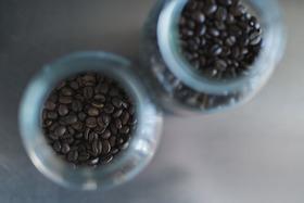 ご予約優先権とスペシャルティコーヒー豆セット