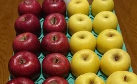りんご5kgとりんごジュース10パック